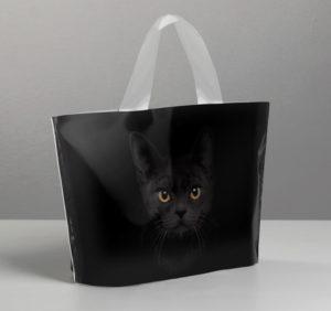Пакет полиэтиленовый с петлевой ручкой «Черная кошка», 26 × 17 см